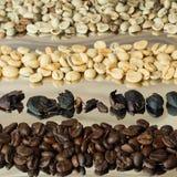Kaffe för fyra variationer Fotografering för Bildbyråer
