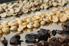 Kaffe för fyra variationer Arkivbild