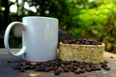 Kaffe för morgonsolljus och grillade kaffebönor på trägolv Royaltyfria Foton