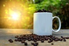 Kaffe för morgonsolljus och grillade kaffebönor på trägolv Arkivfoto