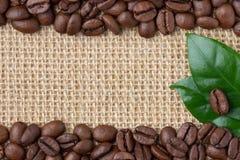 Kaffe gränsar Bönor och blad över säckvävbakgrund royaltyfri foto