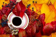 Kaffe i Autumn Leaves royaltyfria bilder