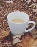 Kaffe i skogen Fotografering för Bildbyråer