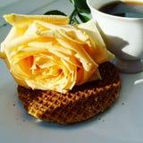 Kaffe i underlag Fotografering för Bildbyråer