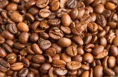 kaffe innehåller det realistiska fotoet för ingreppet för bilden för korn för designelementlutningen Arkivbilder