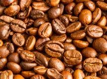 kaffe innehåller det realistiska fotoet för ingreppet för bilden för korn för designelementlutningen Arkivbild