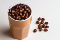 kaffe innehåller det realistiska fotoet för ingreppet för bilden för korn för designelementlutningen Royaltyfri Fotografi