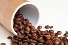 kaffe innehåller det realistiska fotoet för ingreppet för bilden för korn för designelementlutningen Royaltyfria Foton