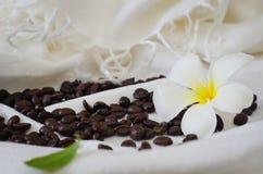 kaffe kärnar ur Royaltyfria Bilder
