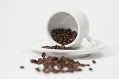 Kaffe kuper med kaffebönor Royaltyfri Foto