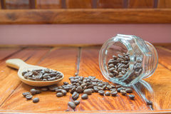 Kaffe mig, kaffeböna Fotografering för Bildbyråer