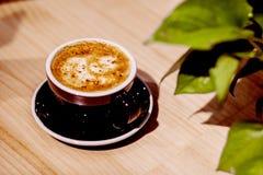 Kaffe och grön växt på tabellen Arkivfoto