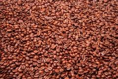 kaffe stekt korn arkivfoton