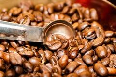 Kaffe vid måttet - kaffebönor i ett mer contanier med att mäta skeden arkivfoto