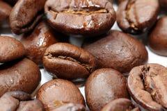Kaffeböna Fotografering för Bildbyråer