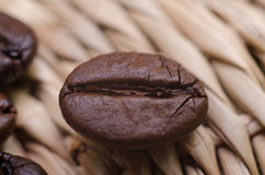 Kaffeböna Royaltyfri Fotografi