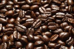 Kaffeböna Arkivfoto