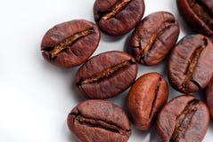 Kaffeböna Royaltyfri Bild