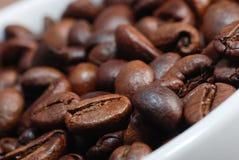 Kaffeböna Royaltyfria Foton