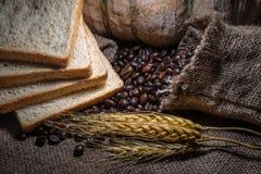 Kaffeböna, hela korn arkivbilder