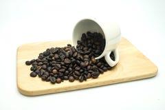 Kaffeböna i koppen Arkivfoton
