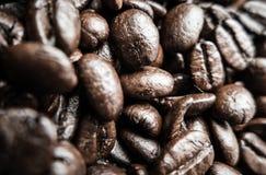 Kaffeböna - koffein royaltyfria bilder