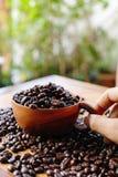 Kaffeböna och träkopp Fotografering för Bildbyråer