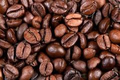 Kaffebönabakgrund Arkivfoto