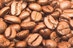 Kaffebönabakgrund arkivfoton