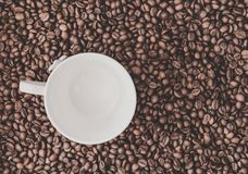 Kaffebönabakgrund med vit kuper Royaltyfri Bild