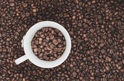 Kaffebönabakgrund med vit kuper Arkivfoton
