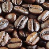 KaffebönaCloseup Royaltyfri Fotografi