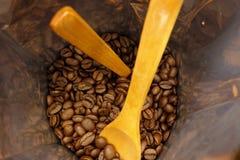 Kaffebönapåse Arkivbild