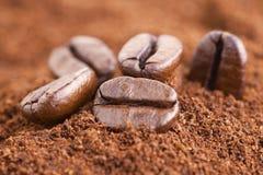 Kaffebönor Arkivfoton