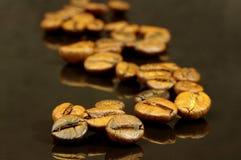 Kaffebönor. Fotografering för Bildbyråer