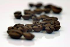 Kaffebönor. Arkivbild