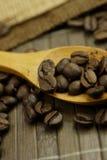 Kaffebönor Royaltyfri Fotografi