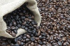 Kaffebönor royaltyfri bild