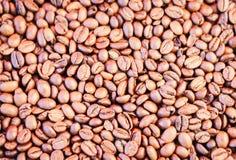 Kaffebönor bryner bakgrund - kopieringsutrymme för text arkivbild