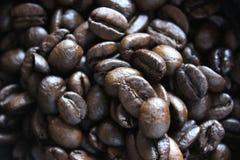 Kaffebönor, espresso Royaltyfria Bilder
