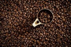 Kaffebönor för nytt kaffe arkivbild