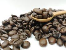 Kaffebönor för selektiv fokus, hälsa, koffein, kafé royaltyfri foto