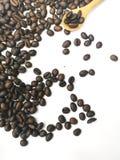 Kaffebönor för selektiv fokus med vit bakgrund, hälsa, koffein, kafé royaltyfri fotografi