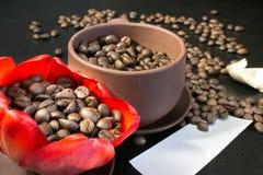 Kaffebönor i den röda blomman för knopp, papper med ditt häfte Royaltyfria Foton