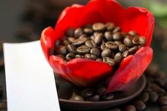 Kaffebönor i den röda blomman för knopp, papper med ditt häfte Royaltyfri Bild