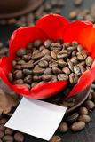 Kaffebönor i den röda blomman för knopp, papper med ditt häfte Arkivbilder