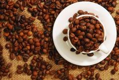 Kaffebönor i en kopp Arkivfoto