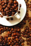 Kaffebönor i en kopp Arkivfoton
