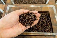 Kaffebönor i en mans hand och behållare i bakgrunden Fotografering för Bildbyråer