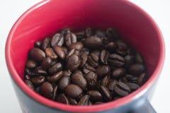 Kaffebönor i en svart och en röd kopp Arkivfoton